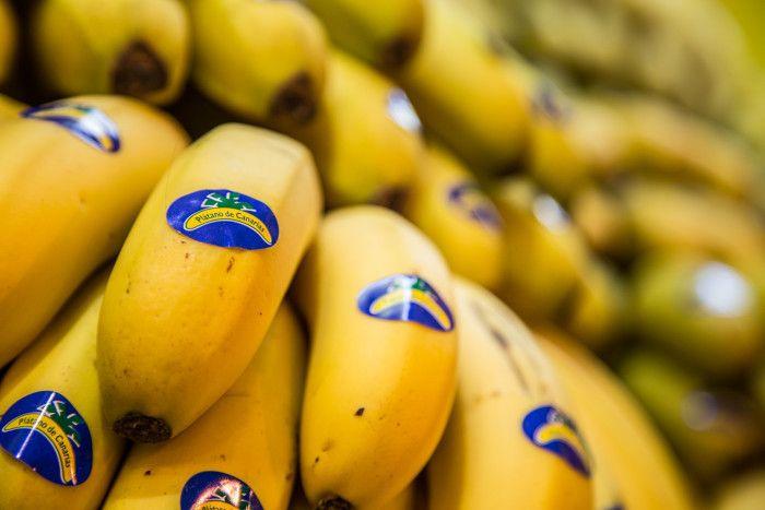 Plátano de Canarias, chupete de oro 2017