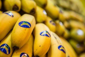 Chupete de Oro - Plátano de Canarias - Bodegas Platé