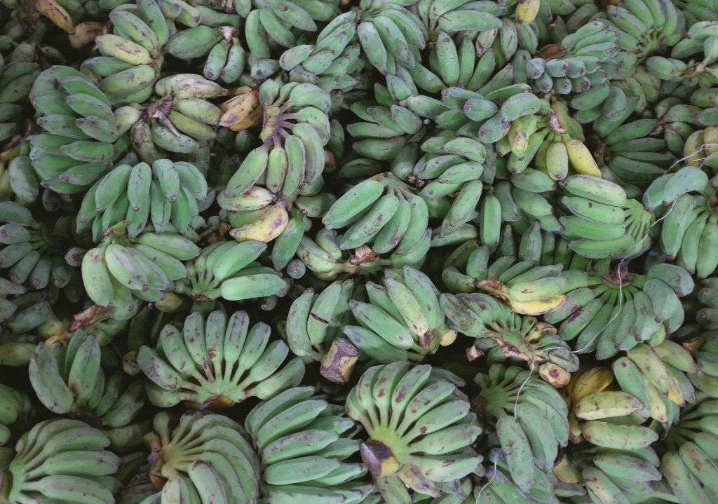 Aumenta el consumo general del plátano de Canarias