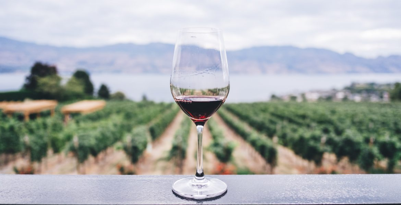 Una copa de vino al día es buena ¿si o no?