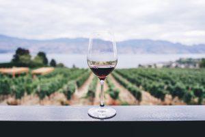 Copa de vino al día