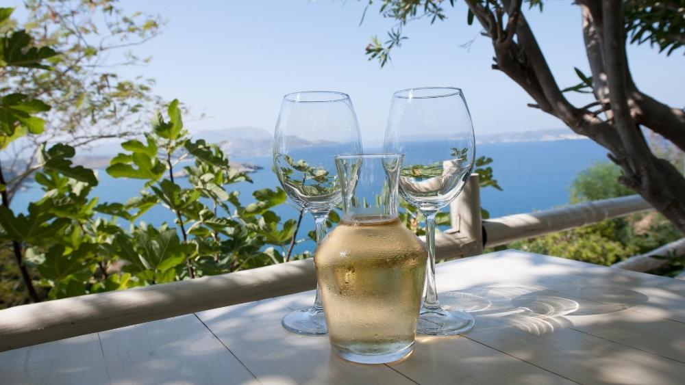 Cómo usar el decantador de vino y para qué sirve.